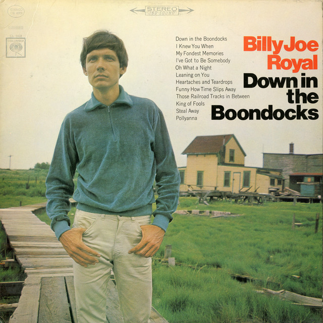 Cover: Billy Joe Royal - Down In the Boondocks