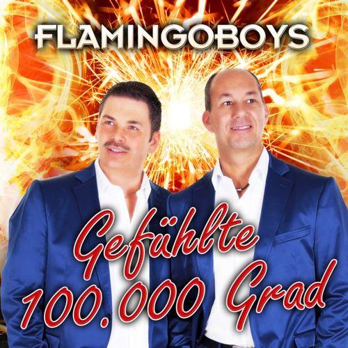 Gefühlte 100.000 Grad (DJ Version) - Flamingoboys